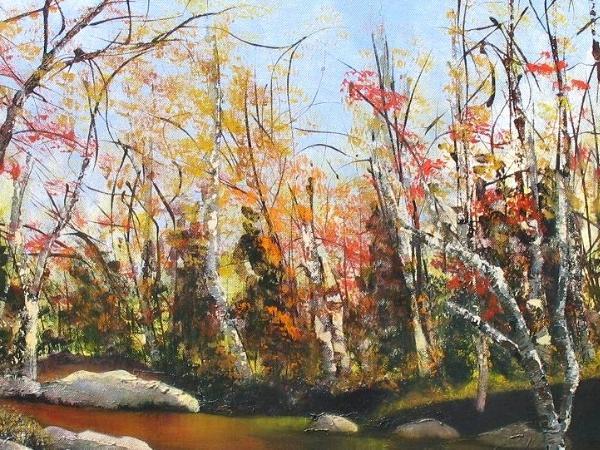 Fall Trees in Pennsylvania