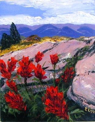 Wildflowers Under Mountain Rock